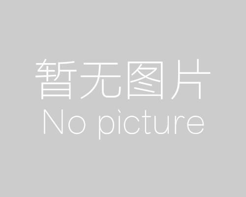 泰安網絡公司網站制作推廣服務